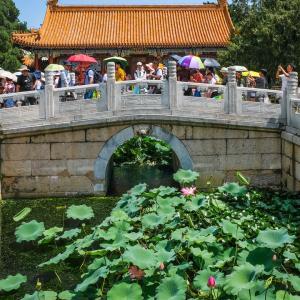 UrbanByNature China Webinar #1 Recap: Introducing NBS and the UrbanByNature programme in China