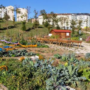 URBAN ECOLOGICAL GARDENS: EDUCATING AND ENGAGING CITIZENSHIP IN THE IMPROVEMENT OF URBAN BIODIVERSITY AND RESPONSIBLE CONSUMPTION PRACTICES