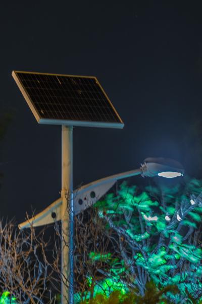 Entry 14 - Solar Panels